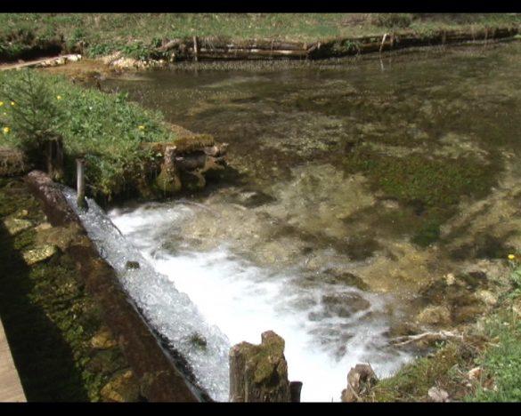 voda izvor 10