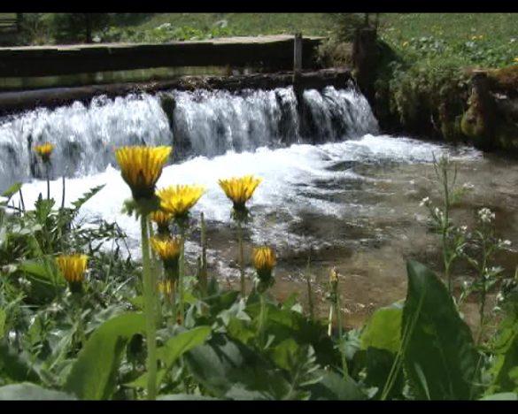 voda izvor 2